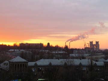 Urban ecology №17719