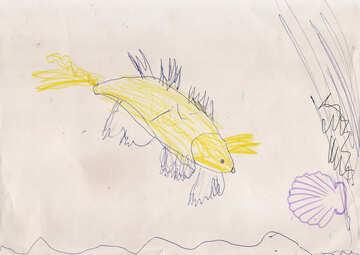 Goldfish №17277