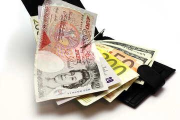 Geldbörse mit Geld №17174