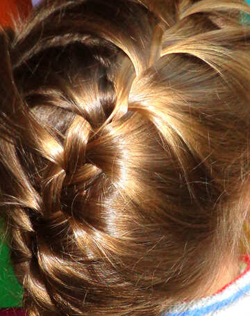 Hairstyle №17894