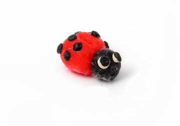 Plasticine red beetle №17348