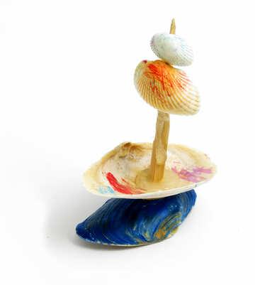 Craft of shells №17330