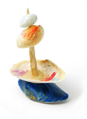 Homemade toy made of shells №17329