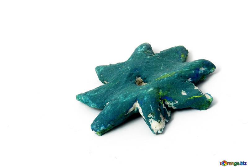 Starfish №17371