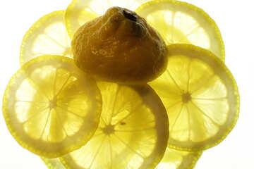 Sliced lemon №18329