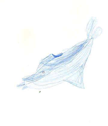 Bleistiftzeichnung von Dolphin. Kinder zeichnen. №18710