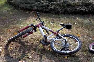 Bicicletta №18635