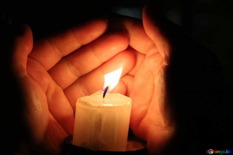 Candle hand Palm №18115