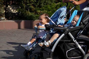 The children walk in wheelchairs №2229