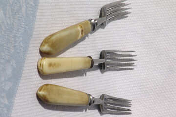 Old fork №2999