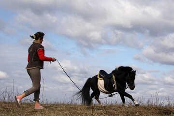 Девушка тренирует пони №2128