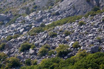 Rocky slope №2298
