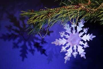 Schneeflocke auf einem Tannenzweig №2362