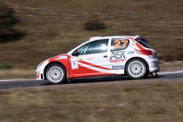 Peugeot 206 rally  №2633