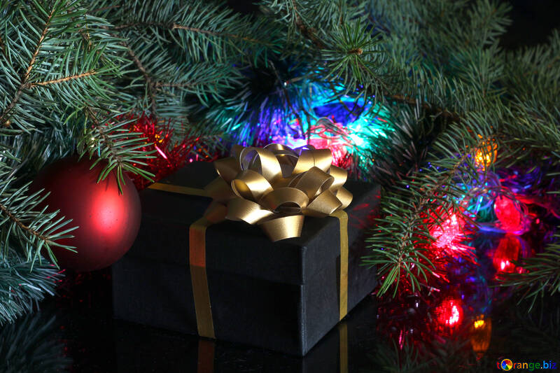 A gift under the tree №2750