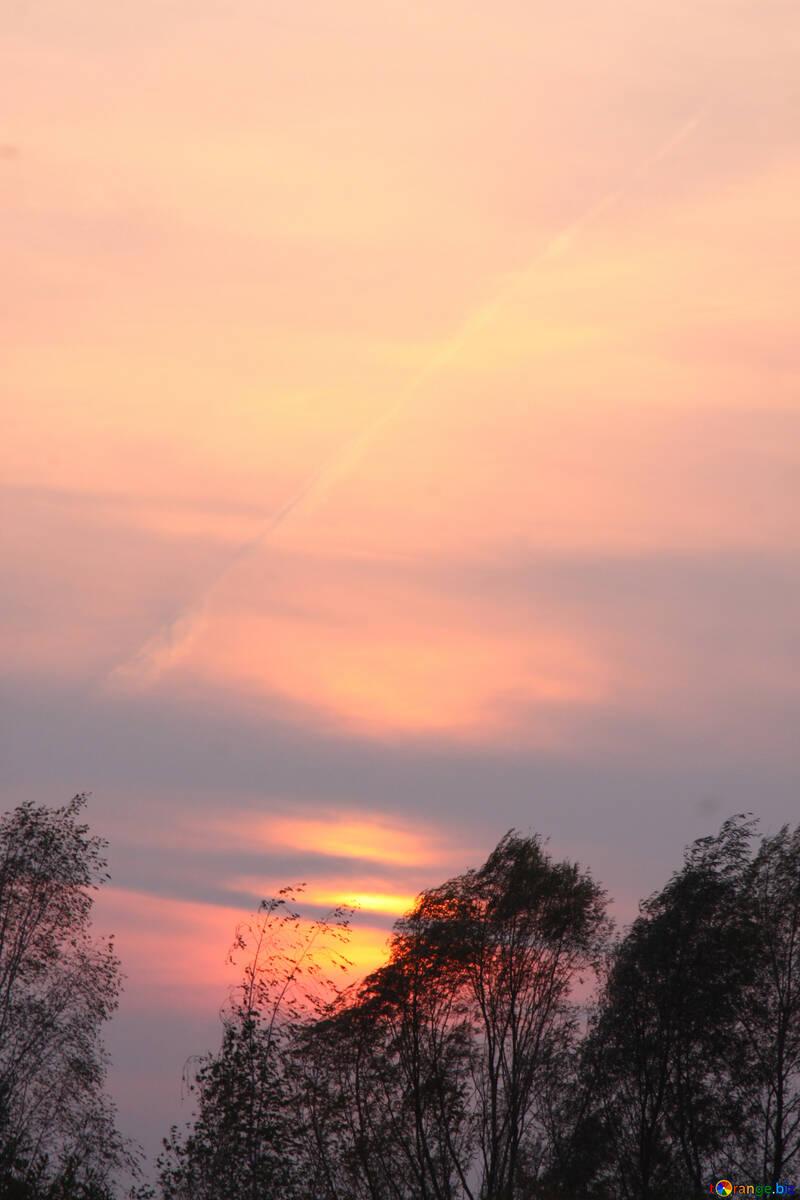 serata cielo cielo al tramonto  №2719