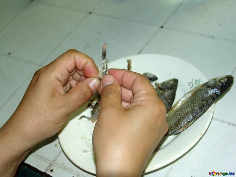Getrocknet Fische in Hände №2458