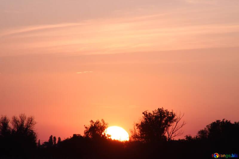 The sun №2876