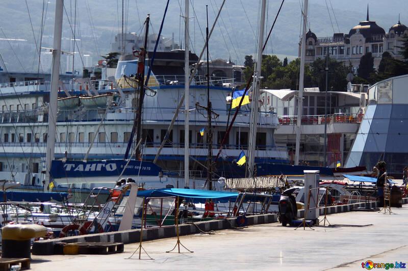 Yalta Argine №2220