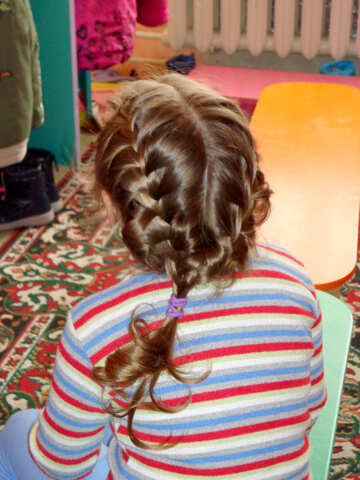 Braided hair №20392
