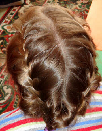 Pigtail hairstyle №20393