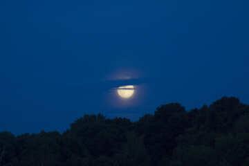 Moonrise №20357