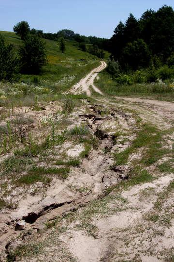 Dirt road №20003