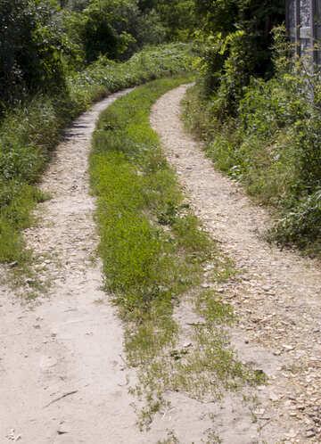 Dirt road №20042