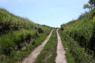 Summer road №20028