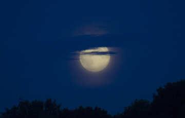 Full moon №20358