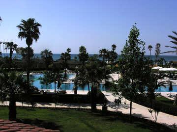 Pool near the sea №20785