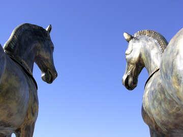 Figures of horses №20910