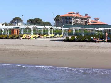 Spiaggia attrezzata con lettini prendisole, sotto copertura №20873