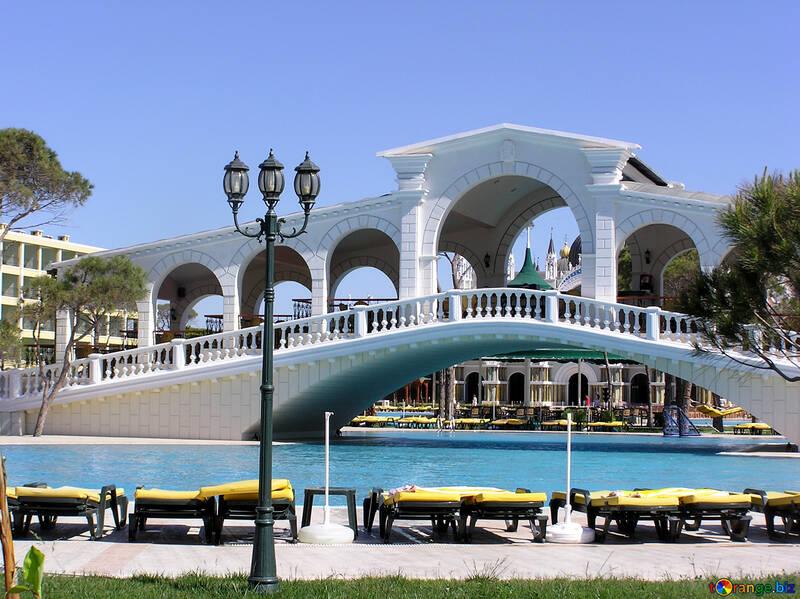 Swimming pool with bridge №20847