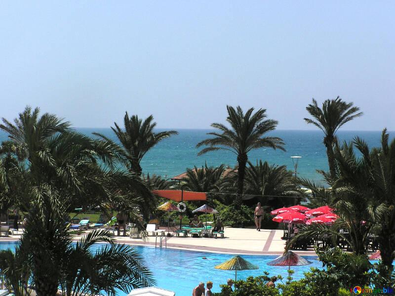 La vista sul mare dalla finestra dell`hotel №20735