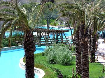Gartenanlage mit pool №21080