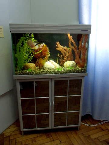Aquarium in the interior №21436