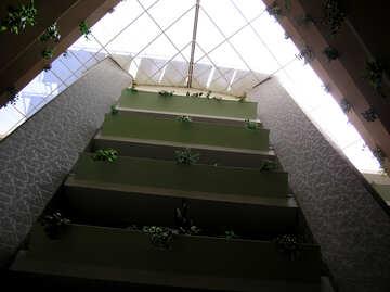 Il tetto di vetro dell`hotel №21727