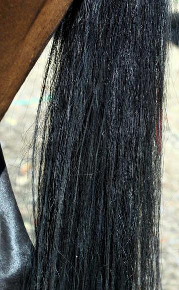 Ponytail №21882