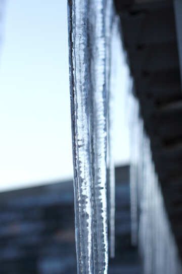 Icicles on the roof №21622