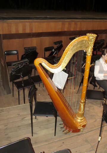 Harp №21638