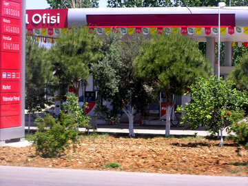 Bäume an der Tankstelle für PKW №21817