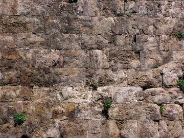 Consistenza del muro in pietra antica №21014
