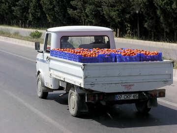 Transportation of vegetables №21202