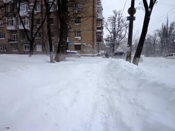 Blizzard in №21590