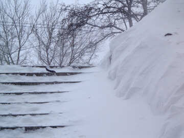 Stairs covered with snow №21573