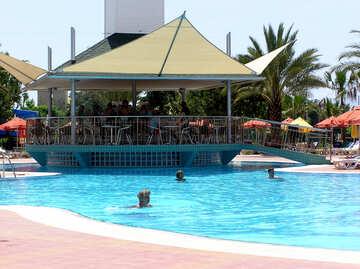 Menschen schwimmen Sie im Pool im Sommer №21709