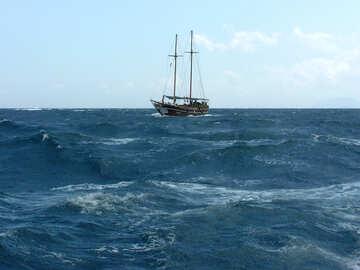 Yacht №21919