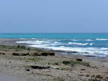 Wild sea №21787