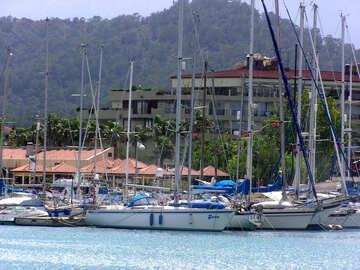 Yacht №21911